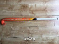 Gryphon hockey stick tour DII