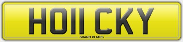 Ho11 Cky Field Hockey Game Player Number Plate Registration Ice Puck Ball Stick